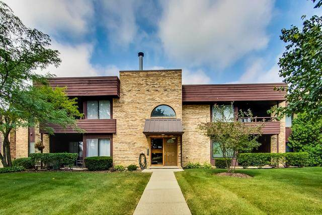 1354 N Sterling Avenue #202, Palatine, IL 60067 (MLS #10815683) :: Lewke Partners