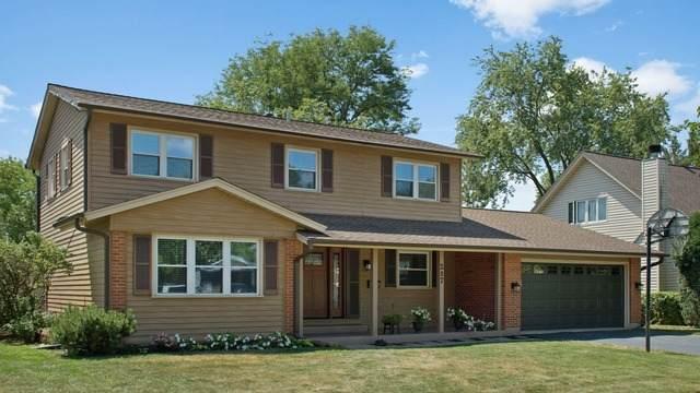 227 Banbury Avenue, Elk Grove Village, IL 60007 (MLS #10815844) :: Century 21 Affiliated