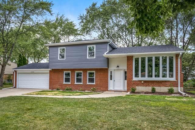 1356 E Rosita Drive, Palatine, IL 60074 (MLS #10816323) :: Lewke Partners
