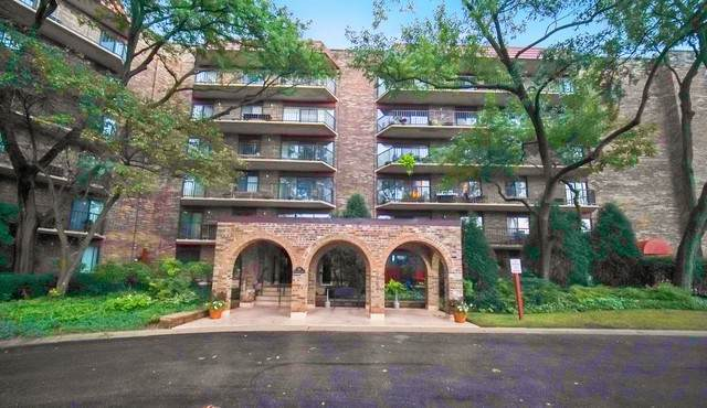 111 S Baybrook Drive #203, Palatine, IL 60074 (MLS #10816458) :: John Lyons Real Estate