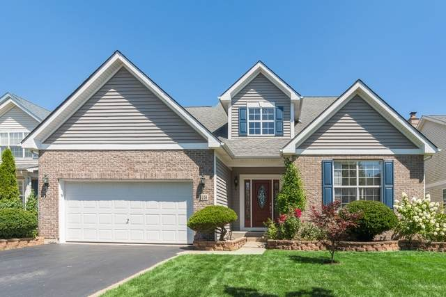 1158 Shawford Way Drive, Elgin, IL 60120 (MLS #10816581) :: Property Consultants Realty