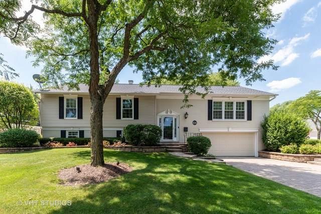 824 S Mallard Drive, Palatine, IL 60067 (MLS #10816624) :: John Lyons Real Estate