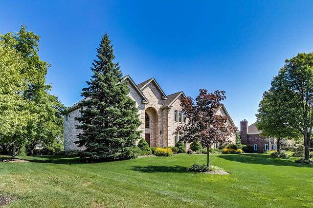 49 Park View Lane, Hawthorn Woods, IL 60047 (MLS #10816643) :: Helen Oliveri Real Estate