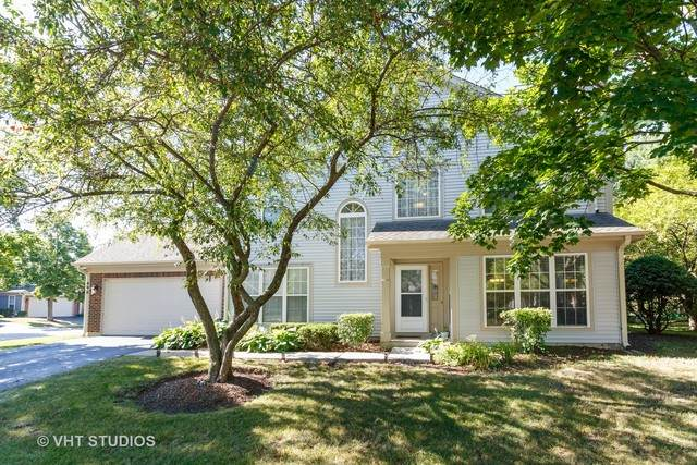 890 Dandridge Court, Elgin, IL 60120 (MLS #10816666) :: John Lyons Real Estate