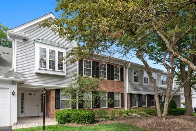 1007 Butternut Lane C, Mount Prospect, IL 60056 (MLS #10816736) :: Helen Oliveri Real Estate