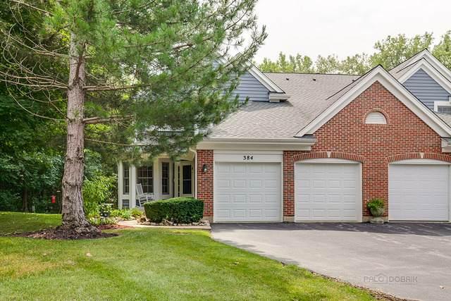 384 Prairie Meadow Lane, Vernon Hills, IL 60061 (MLS #10816852) :: John Lyons Real Estate