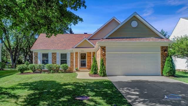 214 Abilene Lane, Vernon Hills, IL 60061 (MLS #10816909) :: Helen Oliveri Real Estate