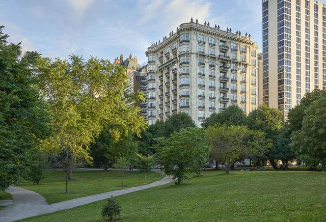 1550 N State Parkway #1001, Chicago, IL 60610 (MLS #10817168) :: John Lyons Real Estate