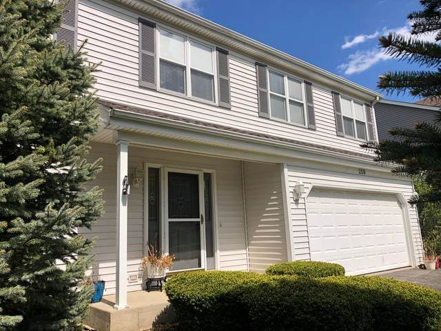 259 Foxmoor Road, Fox River Grove, IL 60021 (MLS #10817314) :: Schoon Family Group