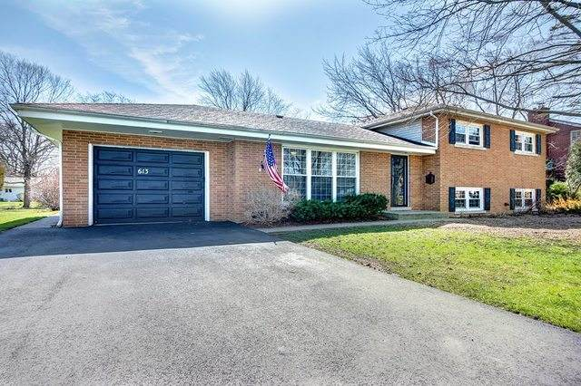 613 Park Drive, Flossmoor, IL 60422 (MLS #10817557) :: Helen Oliveri Real Estate