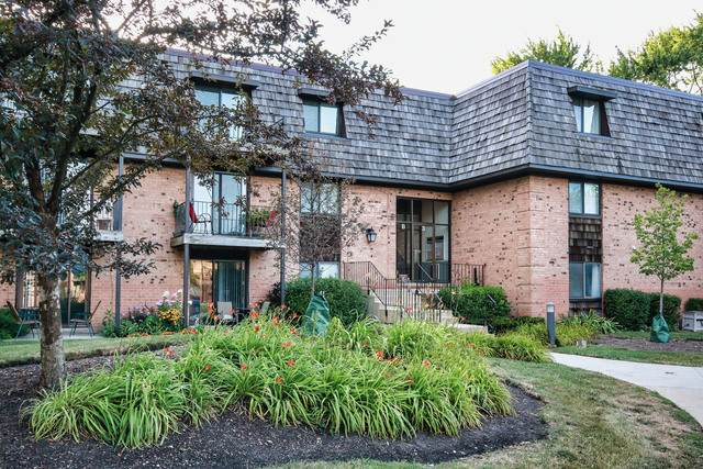 3 Oak Creek Drive #3410, Buffalo Grove, IL 60089 (MLS #10817668) :: Lewke Partners