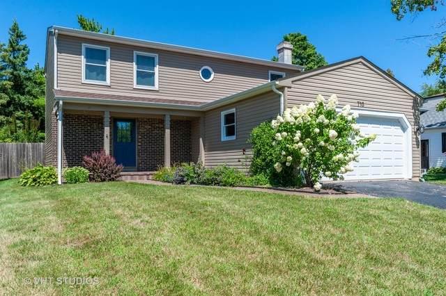 710 N Lakeside Drive, Vernon Hills, IL 60061 (MLS #10818014) :: Helen Oliveri Real Estate