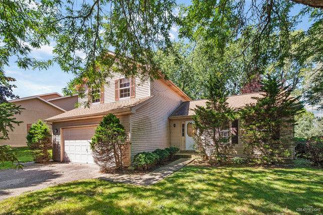 312 Boston Court, South Elgin, IL 60177 (MLS #10818132) :: Suburban Life Realty