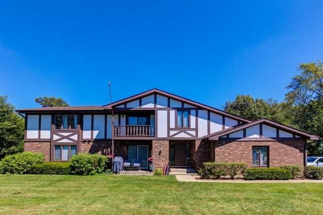 413 Manor Court D, New Lenox, IL 60451 (MLS #10818212) :: John Lyons Real Estate