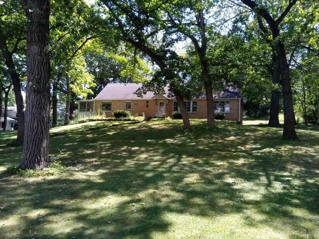 1121 River Terrace Drive, Johnsburg, IL 60051 (MLS #10818353) :: The Mattz Mega Group