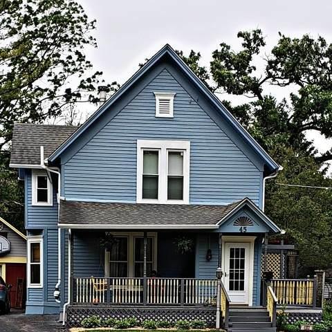 45 N Commonwealth Avenue, Elgin, IL 60123 (MLS #10818588) :: John Lyons Real Estate