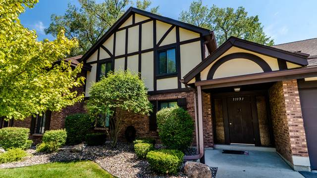 11131 Cottonwood Drive 10D, Palos Hills, IL 60465 (MLS #10818635) :: John Lyons Real Estate