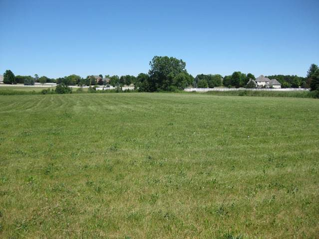 Lot 59 Devon Court, Wadsworth, IL 60083 (MLS #10818995) :: John Lyons Real Estate