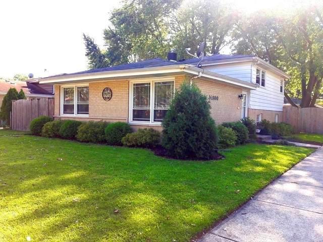 14800 Homan Avenue, Midlothian, IL 60445 (MLS #10819306) :: John Lyons Real Estate