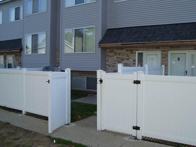 351 Park Ridge Lane C, Aurora, IL 60504 (MLS #10819323) :: John Lyons Real Estate
