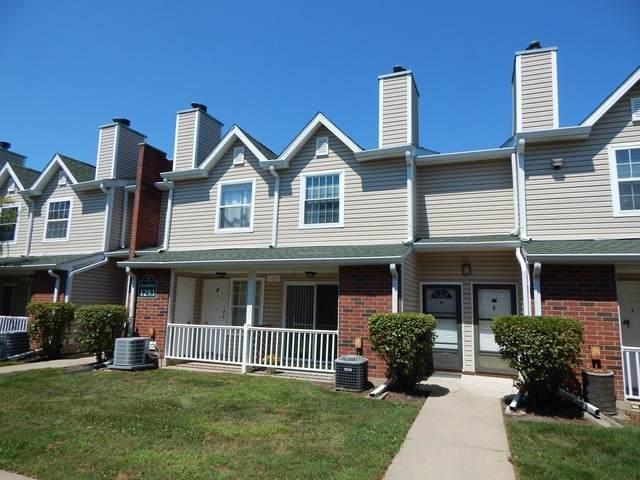 1293 Wyndham Drive #103, Palatine, IL 60074 (MLS #10819601) :: Knott's Real Estate Team