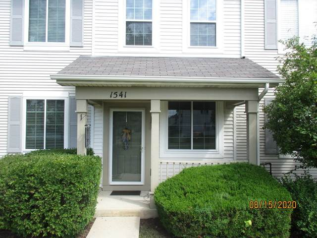 1541 Azalea Circle, Romeoville, IL 60446 (MLS #10819602) :: Knott's Real Estate Team
