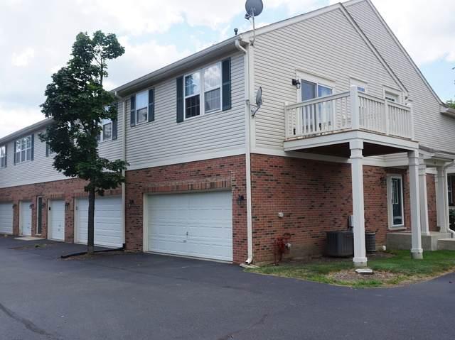 49 N Palazzo Drive, Addison, IL 60101 (MLS #10819604) :: Knott's Real Estate Team