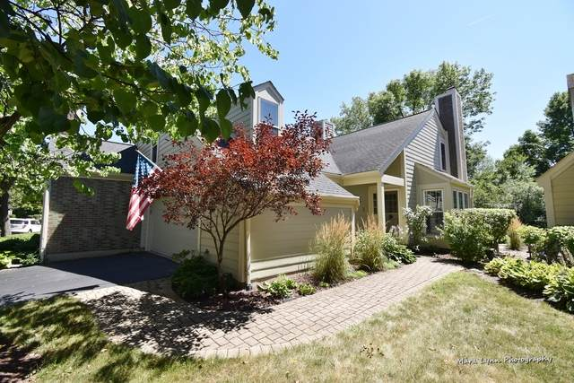45 Whittington Course #45, St. Charles, IL 60174 (MLS #10819632) :: Littlefield Group