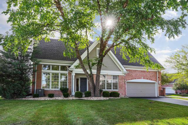 1515 Harbour Towne Place, Naperville, IL 60564 (MLS #10819662) :: John Lyons Real Estate