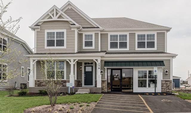 228 Hoffman Drive, Buffalo Grove, IL 60089 (MLS #10820309) :: Littlefield Group