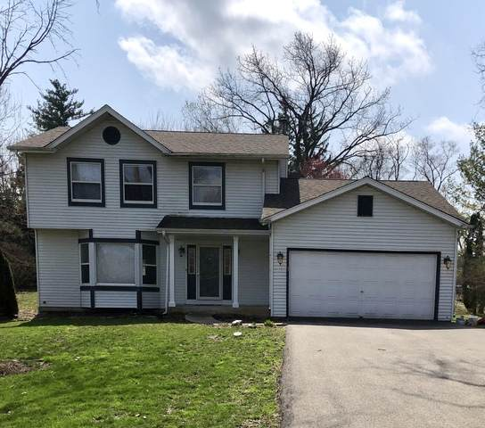 1041 W Palatine Road, Palatine, IL 60067 (MLS #10820845) :: John Lyons Real Estate