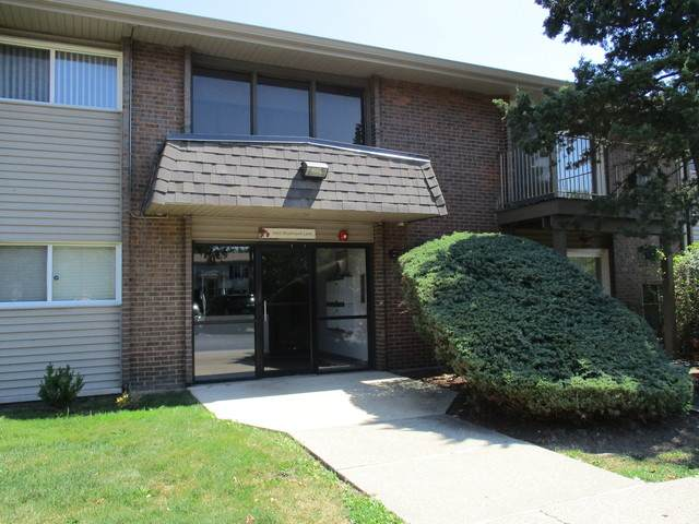 4425 Blackhawk Lane #202, Lisle, IL 60532 (MLS #10822972) :: John Lyons Real Estate
