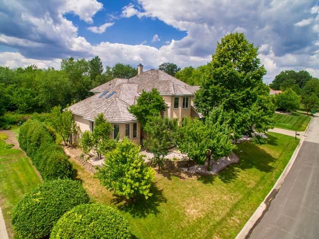 30 Ruffled Feathers Drive, Lemont, IL 60439 (MLS #10823447) :: John Lyons Real Estate