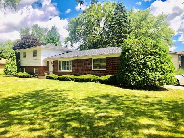 231 S Jane Drive, Elgin, IL 60123 (MLS #10823456) :: BN Homes Group
