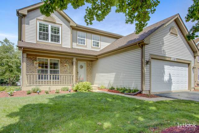 1107 Mallory Court, Naperville, IL 60540 (MLS #10823698) :: Littlefield Group