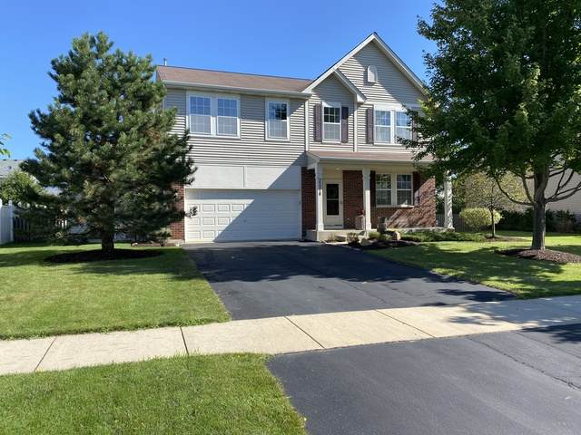 25218 Presidential Avenue, Plainfield, IL 60544 (MLS #10824341) :: Property Consultants Realty