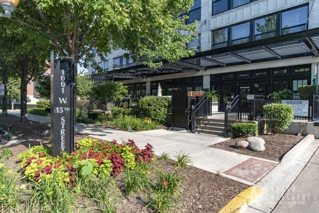 1001 W 15TH Street #332, Chicago, IL 60608 (MLS #10824349) :: Helen Oliveri Real Estate