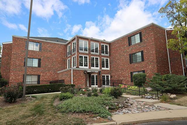 520 Biesterfield Road 108F, Elk Grove Village, IL 60007 (MLS #10824551) :: John Lyons Real Estate