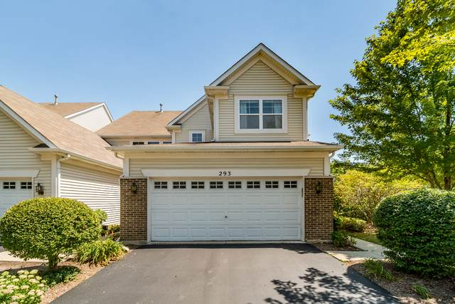 293 Hickory Lane, South Elgin, IL 60177 (MLS #10824574) :: Littlefield Group