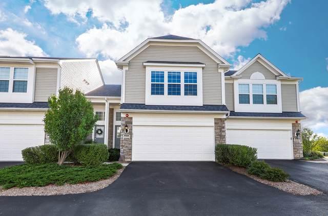 377 Devoe Drive, Oswego, IL 60543 (MLS #10824862) :: John Lyons Real Estate