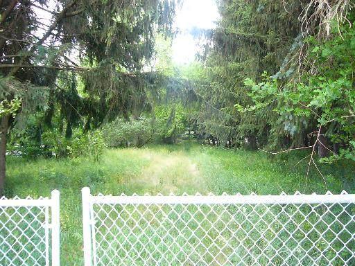 16160 Galena Road - Photo 1