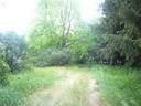 16160 Galena Road - Photo 10