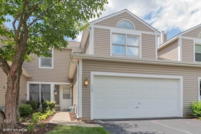 725 Hamilton Circle, Schaumburg, IL 60194 (MLS #10826196) :: John Lyons Real Estate