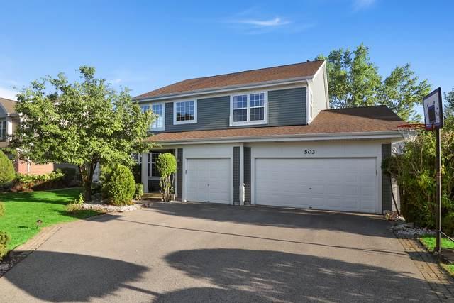503 E Thornhill Lane, Palatine, IL 60074 (MLS #10826738) :: John Lyons Real Estate