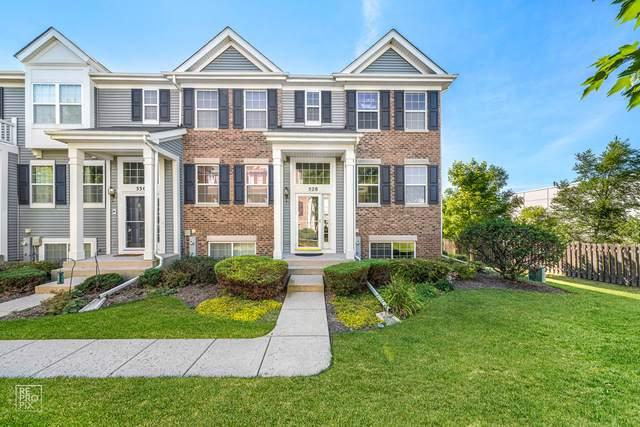 528 Richard Brown Boulevard, Volo, IL 60073 (MLS #10827154) :: John Lyons Real Estate