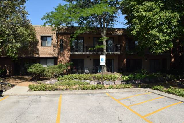 250 Old Oak Drive #172, Buffalo Grove, IL 60089 (MLS #10827166) :: John Lyons Real Estate
