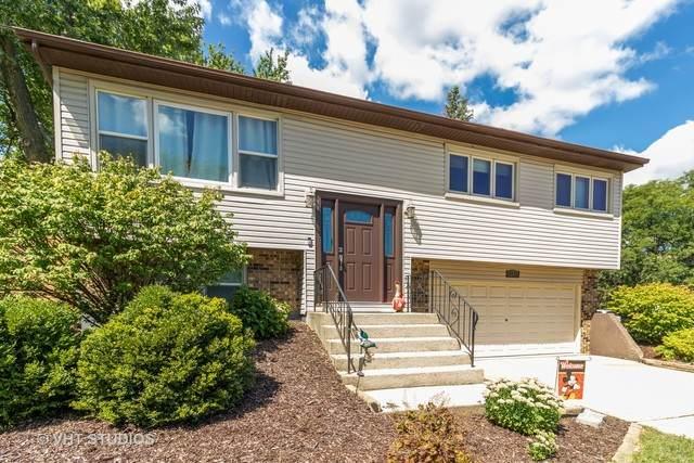15948 Olcott Avenue, Tinley Park, IL 60477 (MLS #10827249) :: John Lyons Real Estate