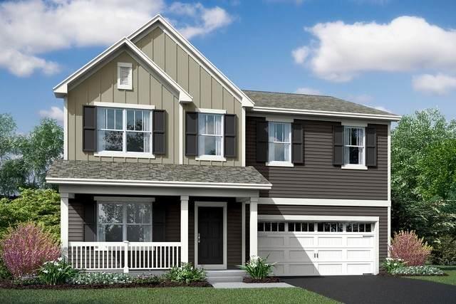 343 Snowdrop #0039 Lane, Elgin, IL 60124 (MLS #10828077) :: John Lyons Real Estate