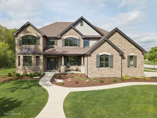 1424 Oak Bluff Lane, Lemont, IL 60439 (MLS #10828087) :: Lewke Partners