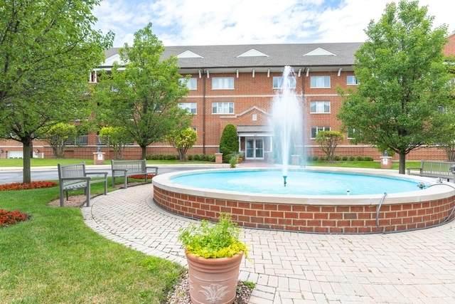 400 S Northwest Highway #204, Park Ridge, IL 60068 (MLS #10828946) :: John Lyons Real Estate